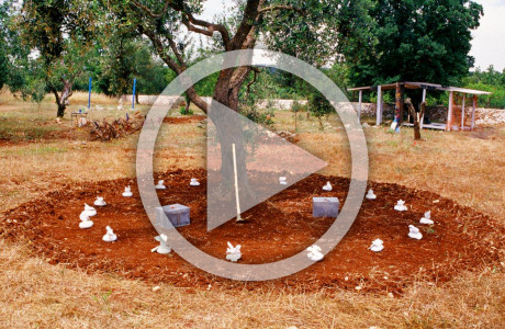 """""""Casaterra - Passaggi"""" Ceglie Messapico Martina Franca (Taranto).  Azione-Installazione: fazzoletti di stoffa, terra, scatole di zinco, zappa, foglia d'oro, sigilli di piombo, spago, ceralacca.  <em>dimensioni varie</em>        Ideazione video di <strong><a href=""""http://www.audiogruppo.com"""" target=""""_blank"""">Piero Bolzan</a></strong>"""