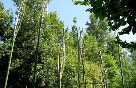HUMUS PARK The Mind Open - LAND ART MEETING4° EdizioneInternzionale -Parco delMuseo Archeologico di Torre (Pordenone).  Installazione: bambu, spago.  <em>dimensioni variabili</em>  opera realizzata con G. Vazza